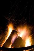 Burning Wood - Camp Fire — Stock Photo