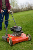 Small Lawn Mower — Stock Photo