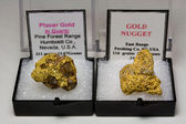 Two Large Natural Gold Nuggets — Stock Photo