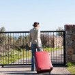 Womleaving with red suitcase. — Stock Photo #41945281