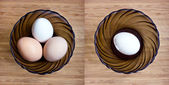 Egg in a bowl — Stock Photo