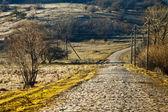 Village road — Stockfoto