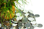 Silver coins,finance — Stock Photo