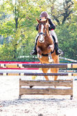 Horse jumping competition — Foto de Stock