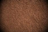 коричневые короткие волосы челка фон — Стоковое фото