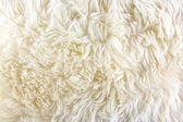 White long hair fur background — Stock Photo