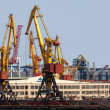 Cargo cranes in Odessa port, Ukraine — Stock Photo