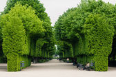 Green bushes at palace garden in Vienna — ストック写真