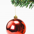 Red bauble hanging on a Christmas tree — Stock Photo #32899247