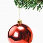 bauble rosso appeso a un albero di Natale — Foto Stock #32899247