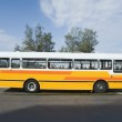 Bus on the road — Stock Photo