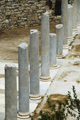 Columns in the courtyard — Stock Photo