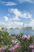 Buildings at the waterfront, St. Julian's — Stock Photo