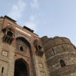 Stock Photo: Old Fort, Delhi