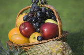 Fruits in the basket — Stock Photo