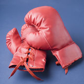 Pair of boxing gloves — Stockfoto