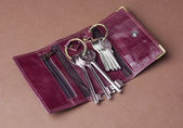 Wallet with key rings — Stock Photo