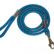 Close-up of a dog leash — Stock Photo #32988039