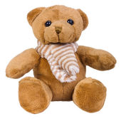 Close-up of a teddy bear — Stock Photo