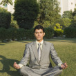 Businessman practicing yoga in a park — Stock Photo