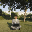 Businessman using a laptop in a park — Stok fotoğraf