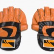Pair of wicket keeping gloves — Stock Photo