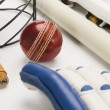 Cricket equipment — Stock Photo