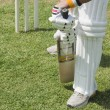 Постер, плакат: Cricket batsman playing a defensive stroke