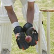 Cricket wicketkeeper catching a ball — Stock Photo