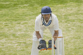 Cricket wicketkeeper behind stumps — Stock Photo