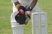 Wicket keeper catching a ball — Stock Photo