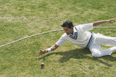 Cricket fielder diving to stop a ball — Stockfoto