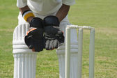 Wicket keeper standing behind stumps — Stock Photo