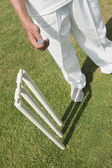 Cricket player tossing a coin — Stockfoto