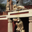 Statues at Lakshmi Narayan Temple — Stock Photo