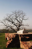 Fatehpur Sikri, Agra, Uttar Pradesh — Stock Photo