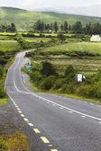 Road passing through fields — Stock Photo