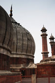 Domes of a mosque, Jama Masjid — Stock Photo