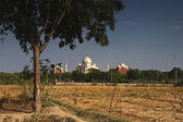 Field with the mausoleum in the background, Taj Mahal — Stock Photo