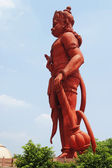 Idol of Lord Hanuman — Stock Photo