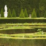 Formal garden, Chateau de Versailles — Stock Photo #33081051