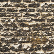 Stock Photo: Weathered wall