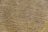 Rippled pattern on sand dunes — 图库照片