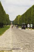 Tourists in a golf cart, Chateau de Versailles — Stock Photo