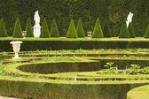 Formal garden, Chateau de Versailles — Stock Photo