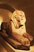 Estátua Esfinge no Museu do louvre — Fotografia Stock