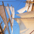Постер, плакат: Sail of a clipper ship