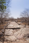Stone pathway at Buddhist pilgrimage site — Stock Photo