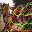 Постер, плакат: Camel at Pushkar Camel Fair