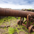 Cannons on the beach — Stock Photo